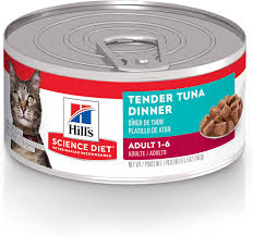 Hills Science Diet Adult Cat - Sensitive Stomach & Skin