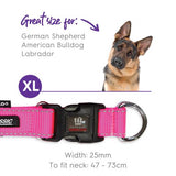 Clearance - Kazoo - Classic Adjustable Collar - Pink