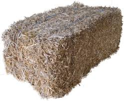 Pea Straw - Bale