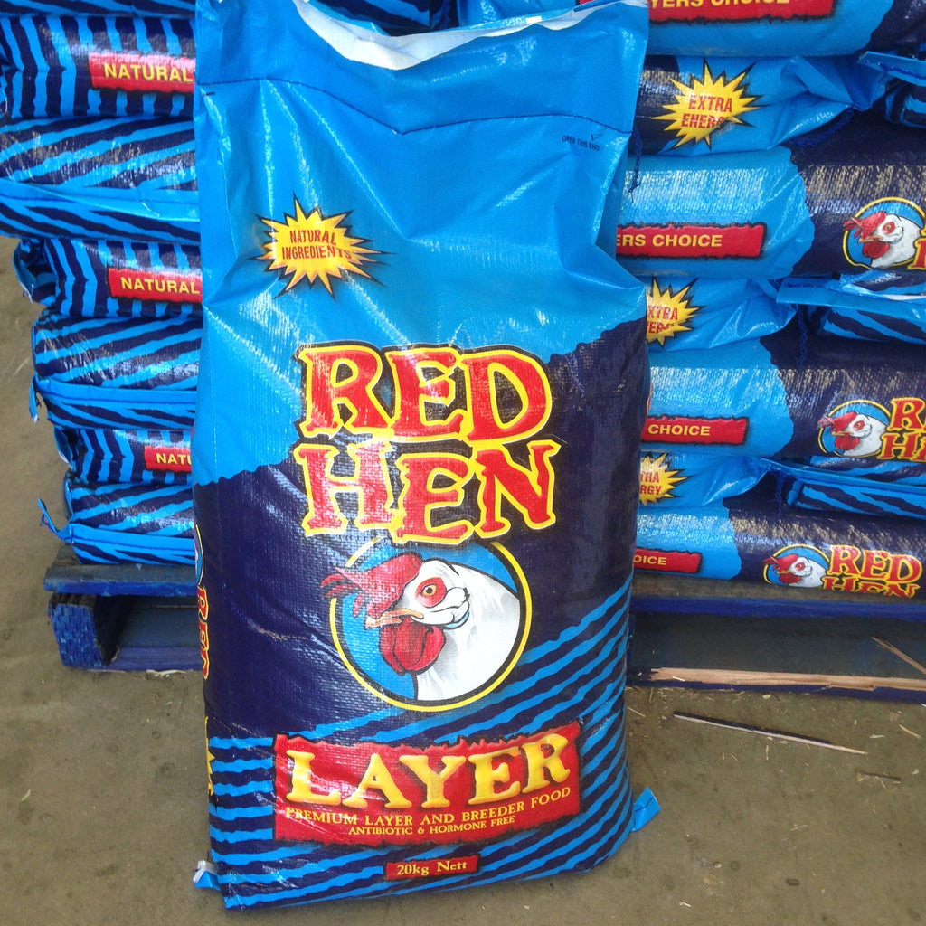 Laucke Red Hen Layer