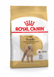 Royal Canin Adult Dog Dry Food - Poodle