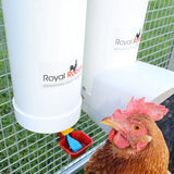 Royal Rooster Poultry Drinker - Single Cup