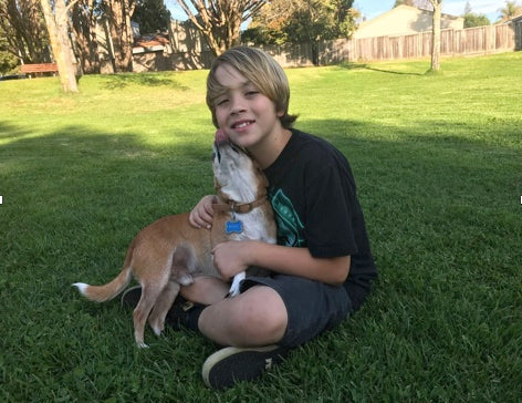 10 year old HERO Ryan, of Santa Cruz, CA. helps homeless dogs find a home.