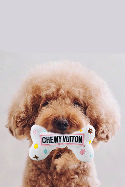 Chewy Dog bone Toy