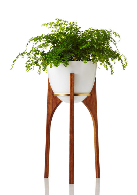 Rocket Planter • Large