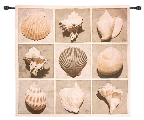 Weathered Shell Sample Fine Art Tapestry
