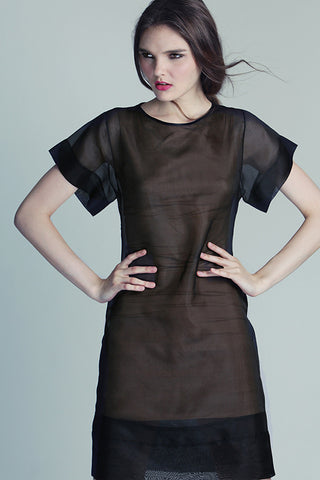 Black Silk Organdy Dress
