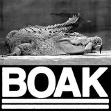 "Boak - II 7"" (Clear Blue Vinyl) - Grindpromotion Records"