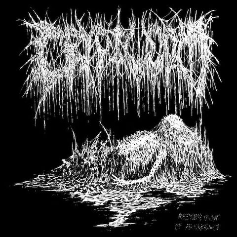 Cryptworm – Reeking Gunk Of Abhorrence LP