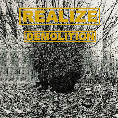 Realize ‎– Demolition LP