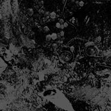 Primitive Man / Unearthly Trance - Primitive Man / Unearthly Trance Split LP - Grindpromotion Records