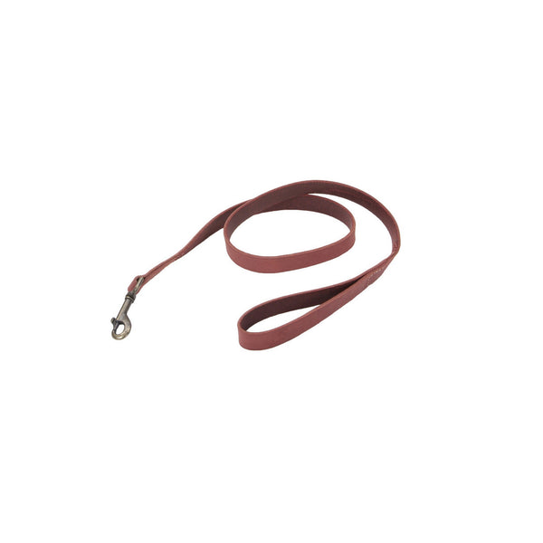 Circle T® Rustic Leather Dog Leash 1x4'