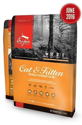 Orijen Cat & Kitten 4 # USA