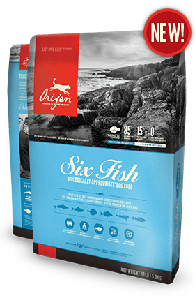 Orijen SIX Fish USA dog food 4.5 lb