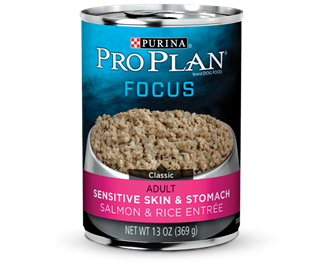Pro Plan  Focus Adult Sensitive Skin & Stomach Salmon & Rice Entrée 13 oz
