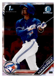 2019 Bowman Chrome Prospects Team Set - Toronto Blue Jays Series 1