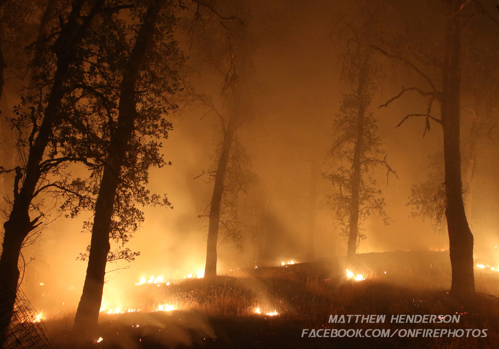 Valley Fire 02