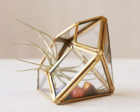 Gold/ Brass Pyramid Terrarium
