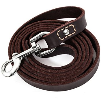 Flat Leather Leads