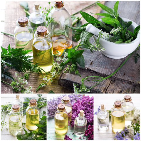 5 Aromatherapy Oils You Need To Know About