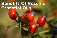 Benefits Of Rosehip Essential Oils