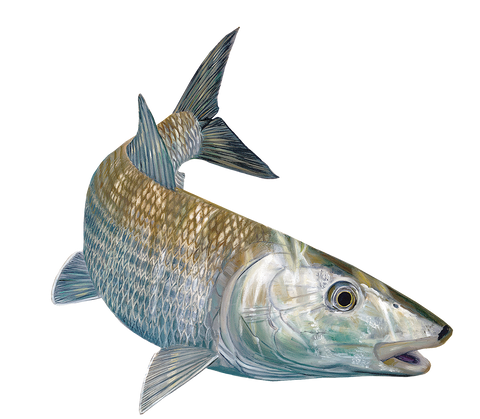 Skiff Life Bonefish Fishing Decal Sticker Randy McGovern Art