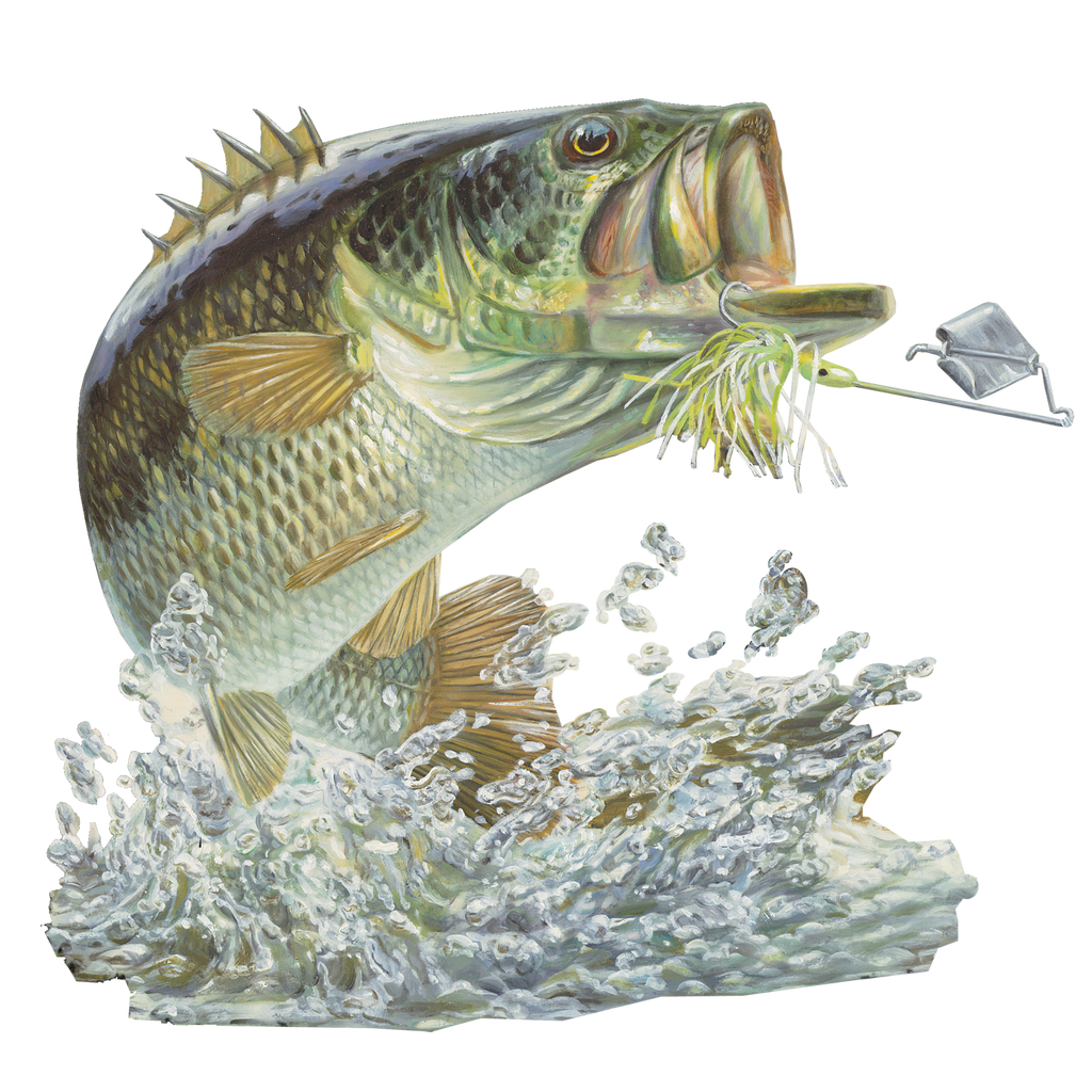 Bass car decal bass stickers truck boat coolers skiff for Pictures of bass fish