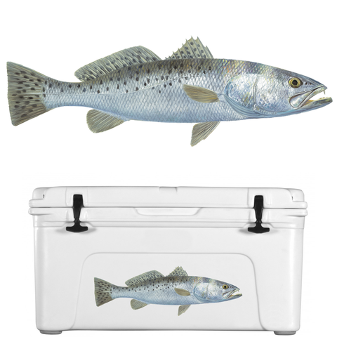 Trout Decal Speckled Lifelike - Skiff Life