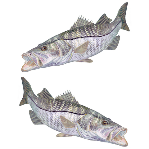Snook Mangrove Monster Mini - Decals Stickers - Skiff Life
