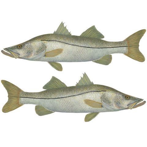 Snook Decal Mini - Decals Stickers - Skiff Life