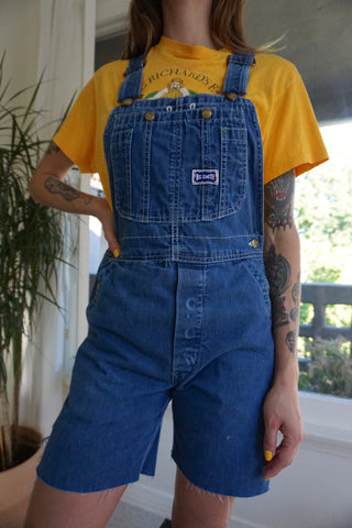 SALE Denim Overall Shorts, Sz. 26 Waist