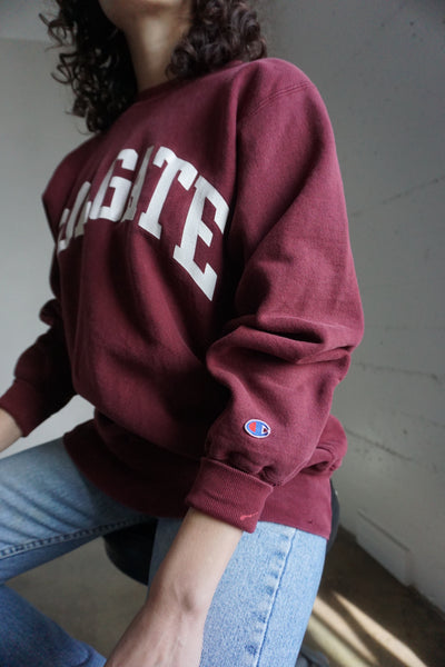 Champion Sweatshirt, Colgate University, Sz. L