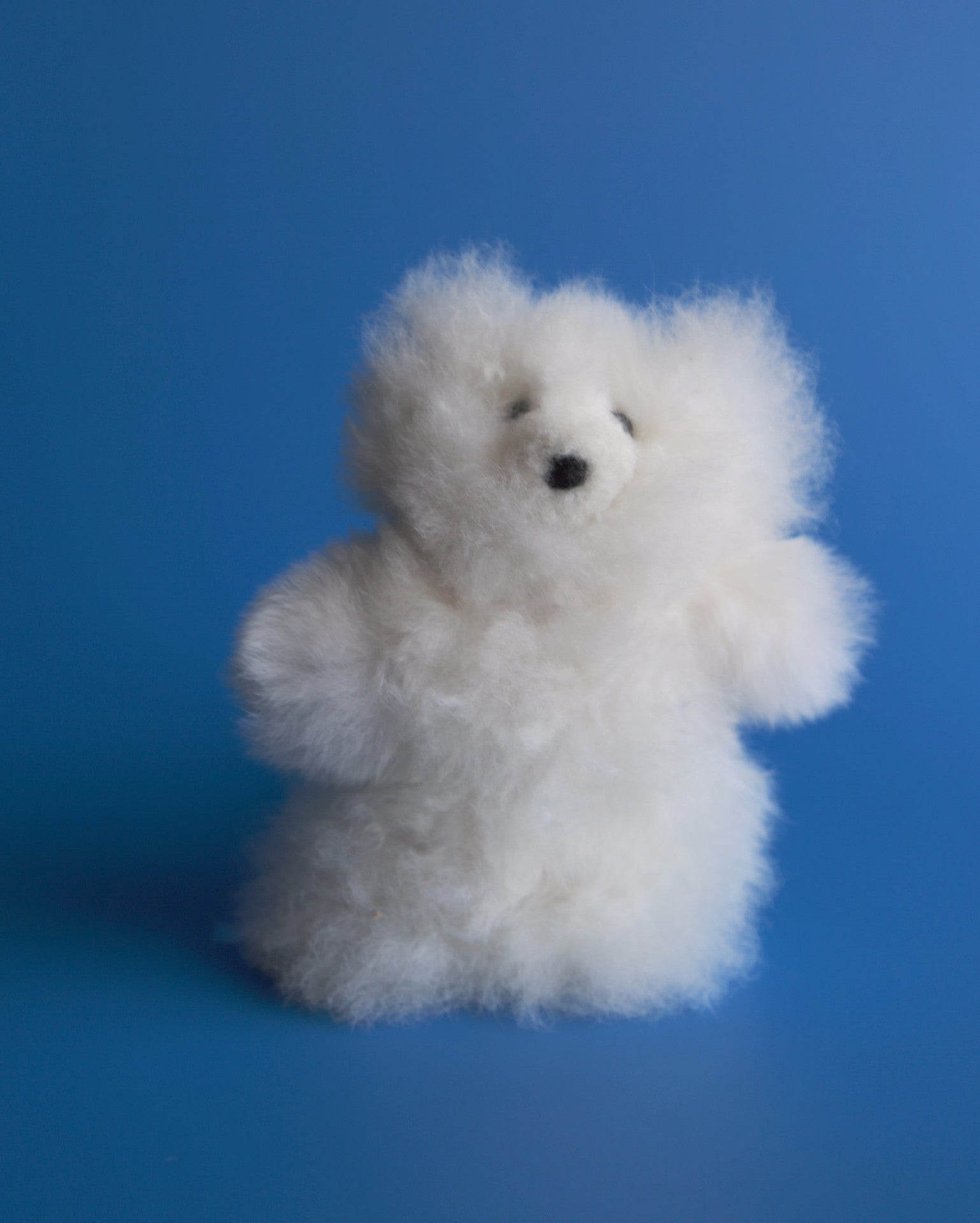 Alpaca Stuffed White Bear Small