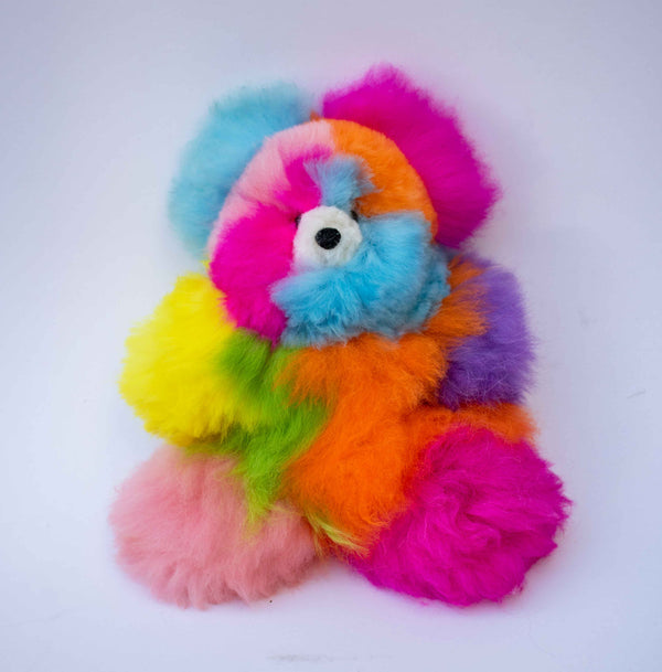 Rainbow Bear - Limited Edition