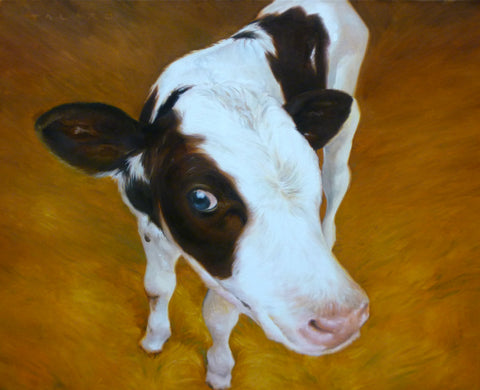 "Golden Calf Oil Painting - 16""x 20"" / SOLD"