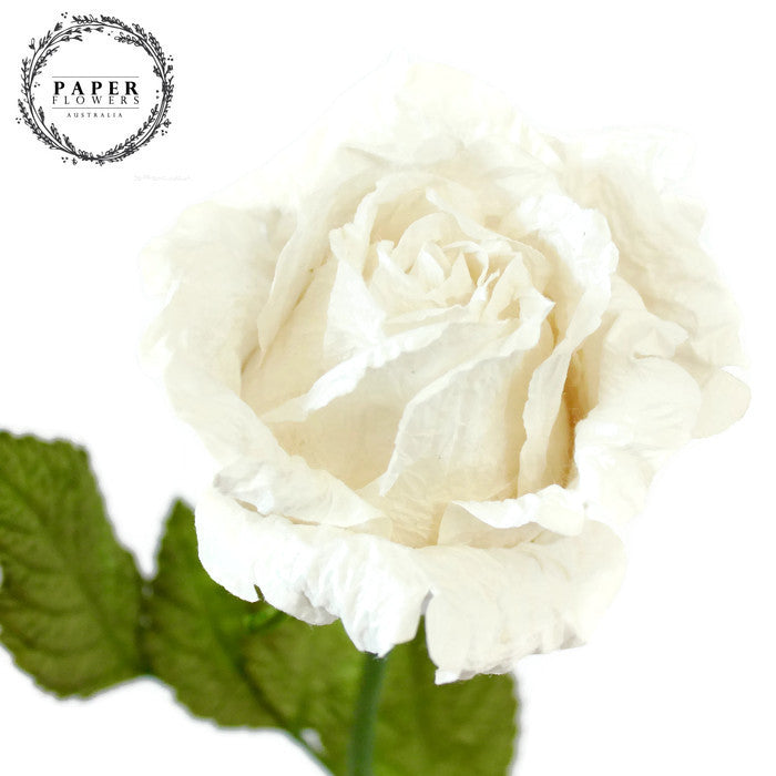 Long stemmed paper rose white paper flowers australia long stemmed paper rose white mightylinksfo