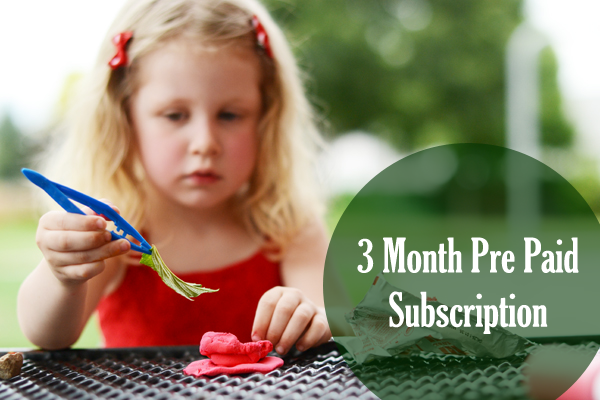 3 Month Pre Paid Subscription