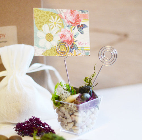 Mini Terrarium Photo holder Kit