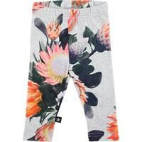 MOLO Sugar Flower Leggings - TAYLOR + MAX