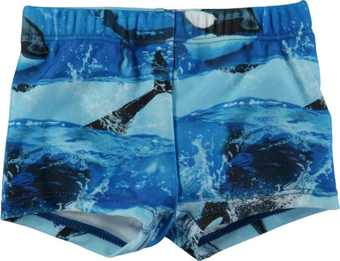 Molo Nansen Killer Whale Swim Trunks