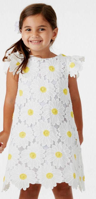 Halabaloo Daisy Lace Dress - TAYLOR + MAX