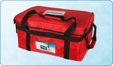 Insulated Rectangular Cooler Bag (Small)