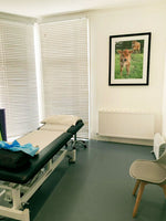 osteopathy acupuncture herbal medicine consultation room