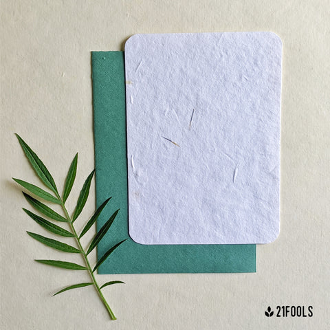 Plantable Seed Paper with Envelope (Blank) - Pack of 5 / Turquoise