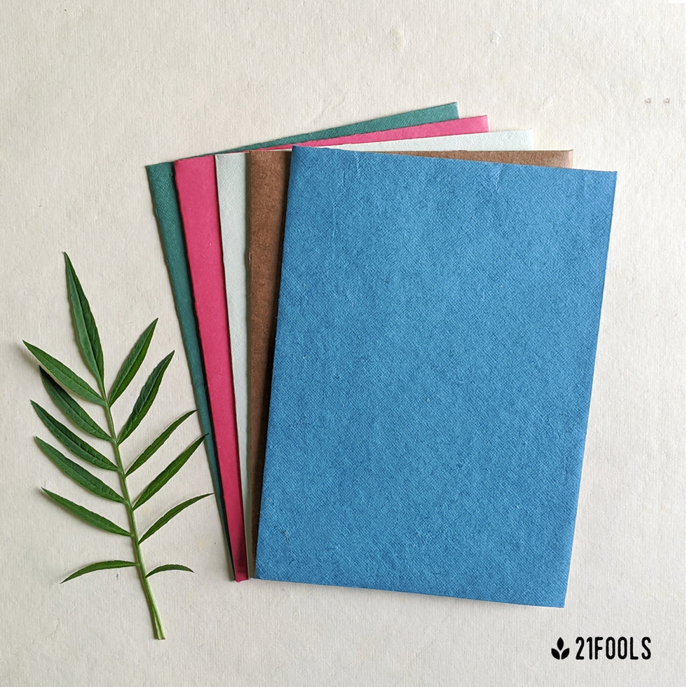 Plantable Seed Paper with Envelope (Blank) - Pack of 5 / Multi color