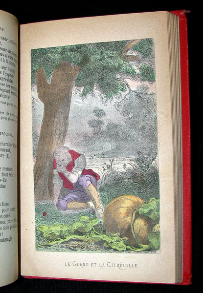 1890 Scarce COLOR illustrated French Book ~ FABLES de Jean de LA FONTAINE