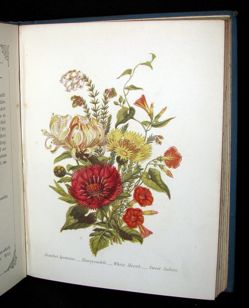 1880 Rare Floriography  Book ~ The Language of Flowers by Robert Tyas, Color Illustrated.