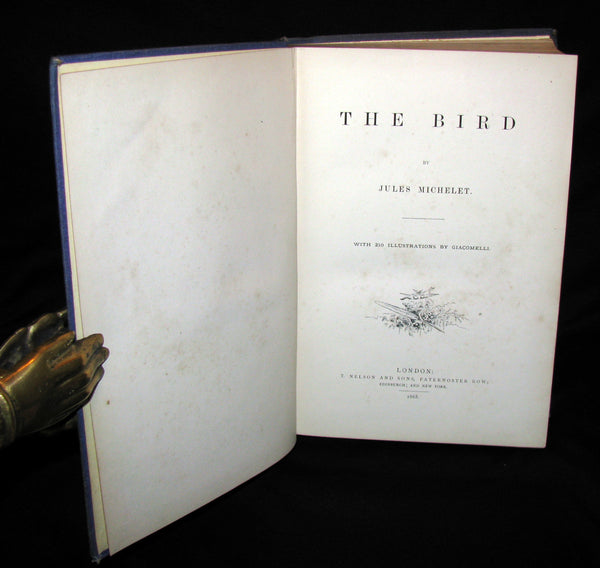 1868 Rare Victorian Book  ~ The BIRD by Jules Michelet with 210 illustrations by Giacomelli