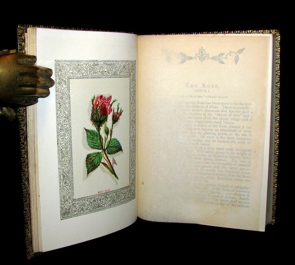 1869 Rare Floriography Book ~ FLORA SYMBOLICA or The language and sentiment of flowers.