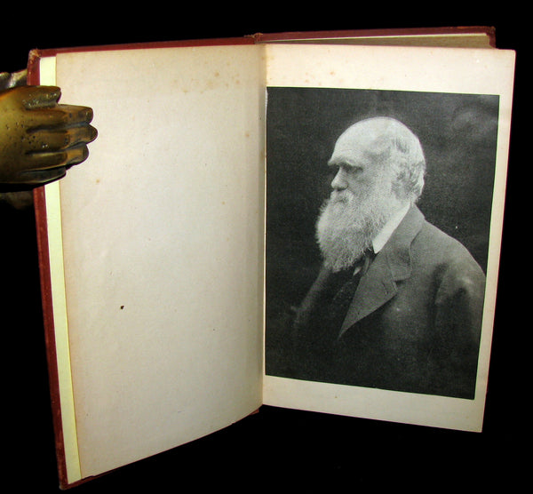 1887 Rare Book - CHARLES DARWIN - The DESCENT OF MAN and Selection in Relation to Sex.